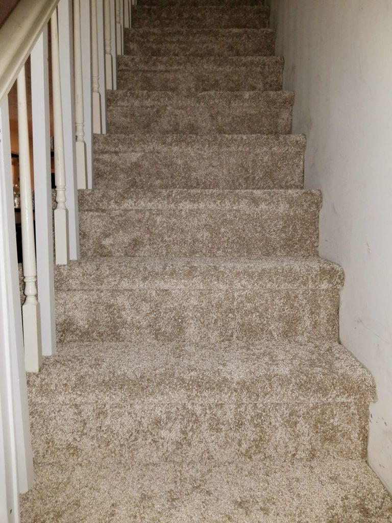 Residential Carpet Stairs | Webb Carpet