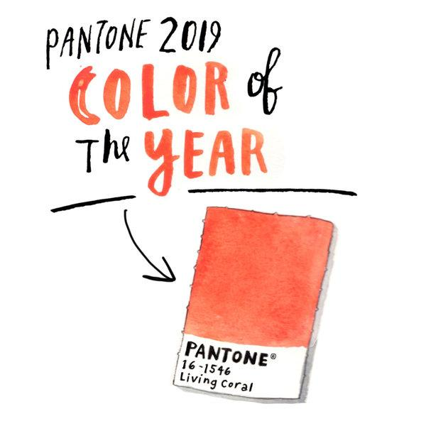 Pantone color | Webb Carpet