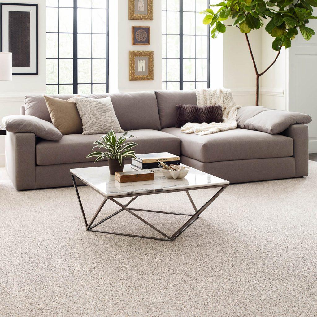 Modern living room flooring | Webb Carpet Company